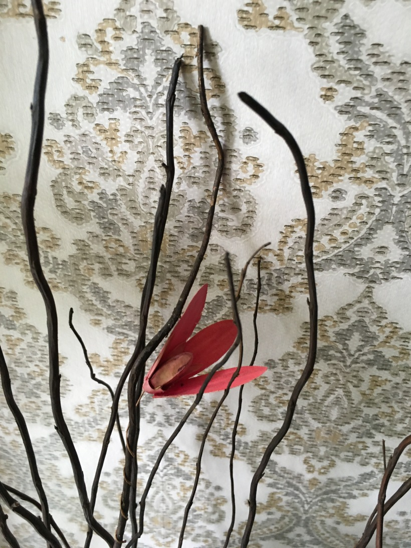 dried twigs with red flower